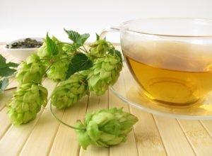 hops-tea
