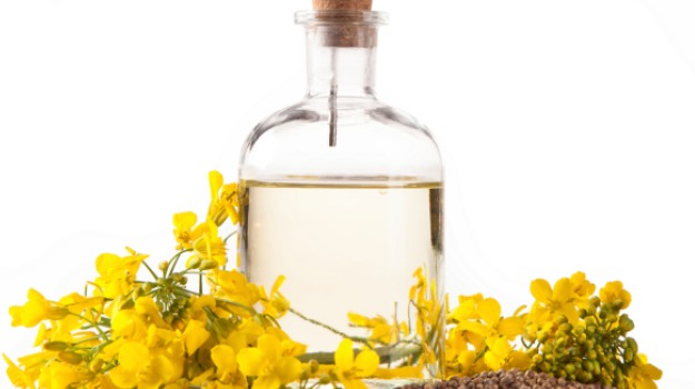 canola-oil_625x350_41425281989