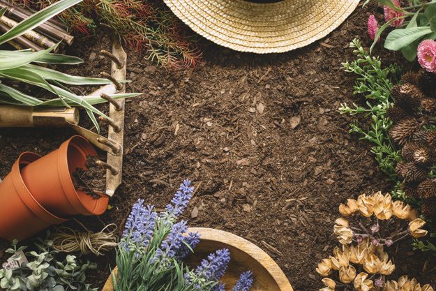 gardening-composition-with-space-in-middle_23-2147673268